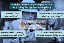 apprenticeshiplevyissues